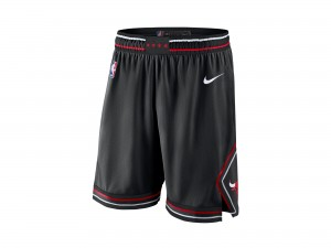 Nike Chicago Bulls NBA Statement Edition Swingman Short