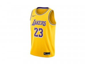 Nike Lebron James NBA Icon Edition Swingman Jersey